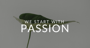no-coast-consulting-we-start-with-passion